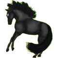 Pegasus Arabian Horse Black