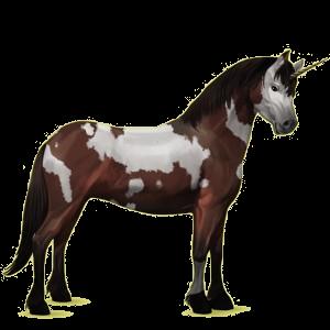 Unicorn pony Connemara Strawberry roan