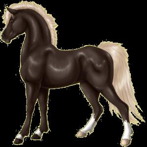 Pony Connemara Mouse Gray