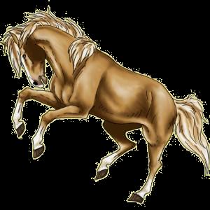 Pony Connemara Light Gray