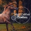 high caliber trotters