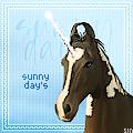 ~`  Ꭶunny  day's ` ~