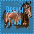 ꧁ dream team ꧂