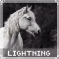 lightning connemaras