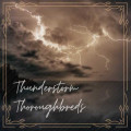 thunderstormthoroughbreds