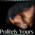 politely yours