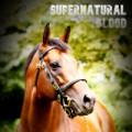 supernatural blood