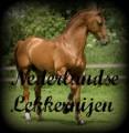 nederlandse lekkernijen