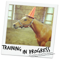 training in progress