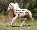 gunz øf australians