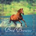 велічны конь