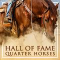 hall of fame qhs