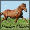 peruvian giants