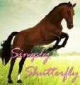 simply shutterfly