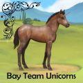 bay team unicorns