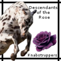 descendants of the rose