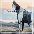 ȶнε fαιя αη∂ ησʙℓє ʜєαяȶs