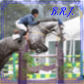 blue ribbon jumpers