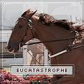 eucatastrophe