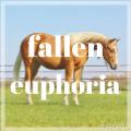 fallen euphoria