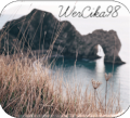 wercika98