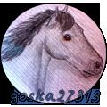 goska27313