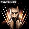 'wolverine77