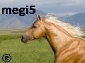 megi5