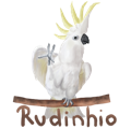 rudinhio