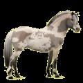 berta silverwell