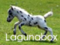 lagunabox