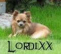 lordixx