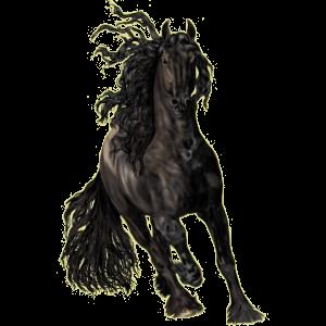 Koń wierzchowy Koń achał-tekiński Skarogniada