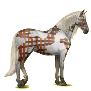 Koń wierzchowy Koń andaluzyjski Bułana