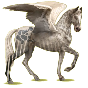 Pegaz wierzchowy Koń achał-tekiński Brudnokasztanowata