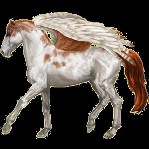 Pegaz wierzchowy Koń czystej krwi arabskiej Skarogniada