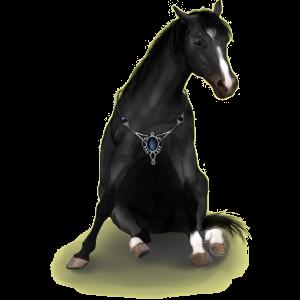 Koń wierzchowy Koń hanowerski Siwa Jabłkowita