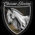 charme slovène