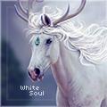 ~ white soul ~