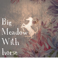 big meadow with horse