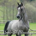 ~ unearthly beauty ~