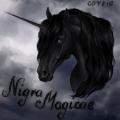 nigra magicae
