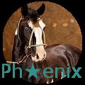 ph★enix