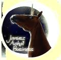 janusz achał business