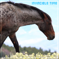invincible time