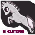 13 holsteiner