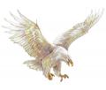 eagle sqadron