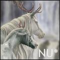 Νεράιδα unicorn *