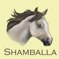 shamballa