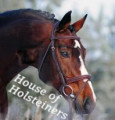 house of holsteiners